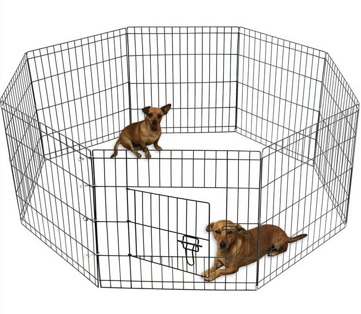 puppyren-header